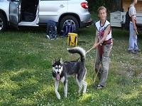 Huskies Erleben